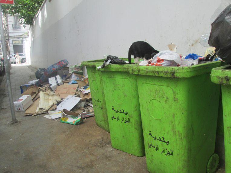 Rue-Rabah-Noel-e1531559487473.jpg