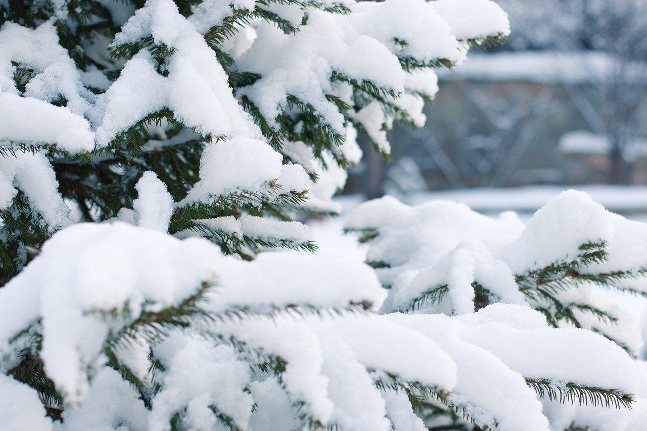 Alerte météo : chutes de neige sur les hauteurs de plus 900 m
